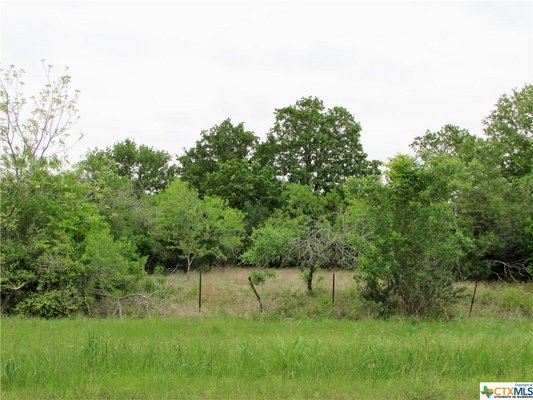 4.4 Unrestricted Acres in Gonzales County! in REmilitary