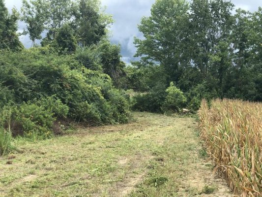 Acreage For Sale! Ramsey Road in REmilitary